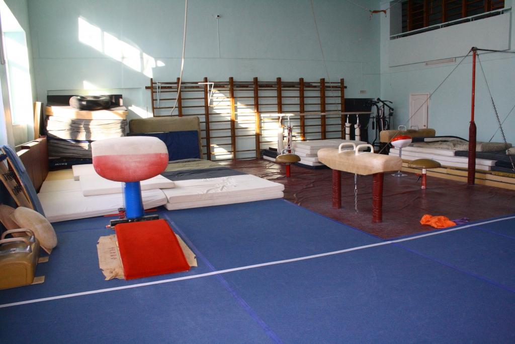 Гимнасты и акробаты получили поддержку мэрии, Фото с места события собственное